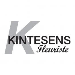 Kintesens Haguenau